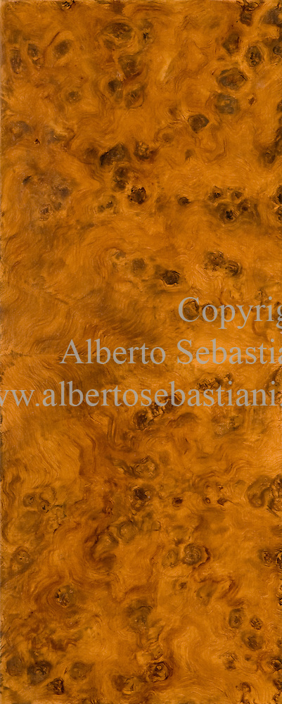an elm briar-root marquetry wood texture - a painted imitation of wood (alberto sebastiani)