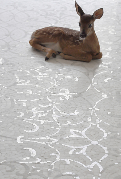 Marabel, a hand cut natural stone mosaic, is shown in honed Thassos and polished Calacatta Tia. (New Ravenna Mosaics 2009)