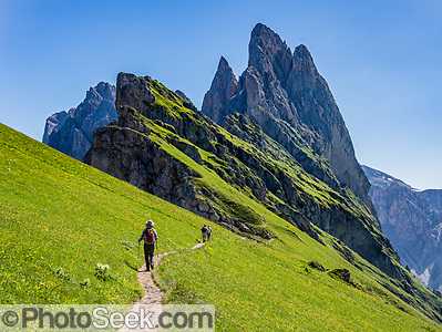 Sharp spires of the Geisler/Odle Group soar above a hiker on green Alpe di Seceda, above St. Christina and Ortisei, in South Tyrol, the Dolomites, Italy, Europe. The beautiful ski resort of Selva di Val Gardena (German: Wolkenstein in Gröden; Ladin: Sëlva Gherdëine) makes a great hiking base in the Trentino-Alto Adige/Südtirol (South Tyrol) region of Italy. For our favorite hike in the Dolomiti, start from Selva with the first morning bus to Ortisei, take the Seceda lift, admire great views up at the cross on the edge of Val di Funes (Villnöss), then walk 12 miles (2000 feet up, 5000 feet down) via the steep pass Furcela Forces De Sieles (Forcella Forces de Sielles) to beautiful Vallunga (trail #2 to 16), finishing where you started in Selva. The hike traverses the Geisler/Odle and Puez Groups from verdant pastures to alpine wonders, all preserved in a vast Nature Park: Parco Naturale Puez-Odle (German: Naturpark Puez-Geisler; Ladin: Parch Natural Pöz-Odles). UNESCO honored the Dolomites as a natural World Heritage Site in 2009. (© Tom Dempsey / PhotoSeek.com)
