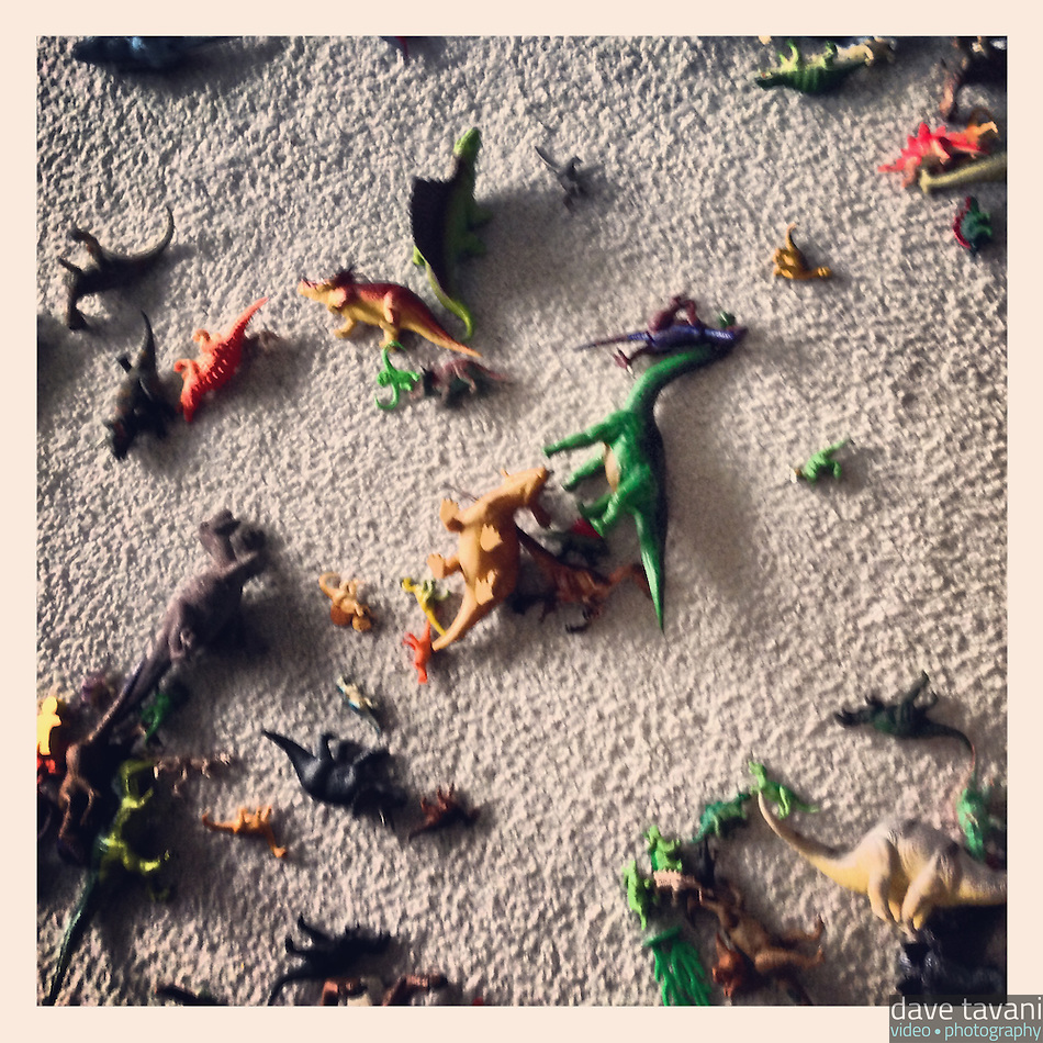 Dinosaurs lay strewn about the floor of my nephew's bedroom, February 2, 2013. (Dave Tavani)