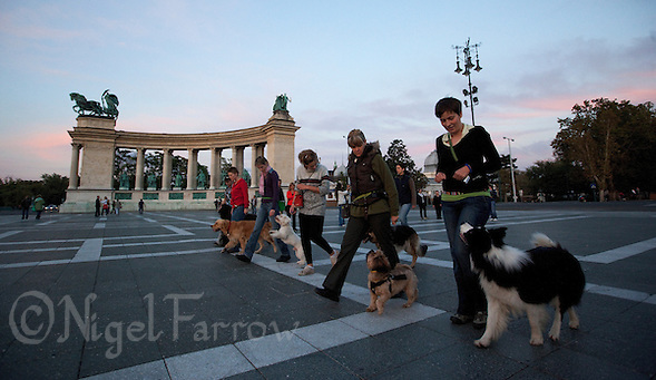 09 SEP 2010 - BUDAPEST, HUN - As dusk falls dog obedience class members put their pets through their paces in Heroes Square .(PHOTO (C) NIGEL FARROW) (NIGEL FARROW/(C) 2010 NIGEL FARROW)