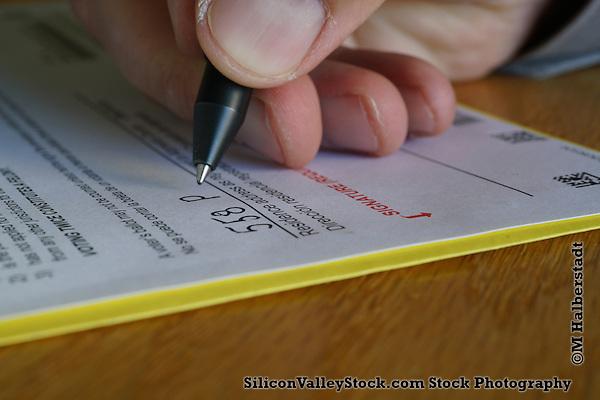 Voting (M. Halberstadt / SiliconValleyStock.com)