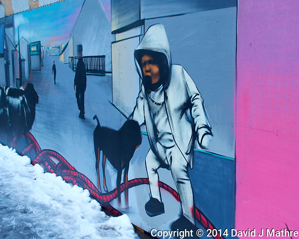 Street art on a rainy day walkabout in Reykjavik. Image taken with a Leica X2 camera (ISO 100, 24 mm, f/3.5, 1/60 sec). (David J Mathre)