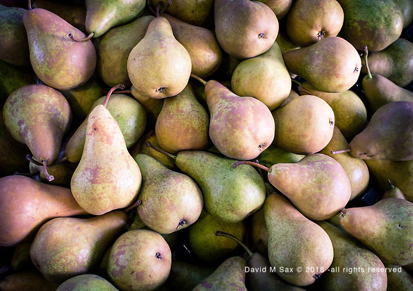 9.21.18 - Pairs of Pears... (© David M Sax 2018 - all rights reserved)