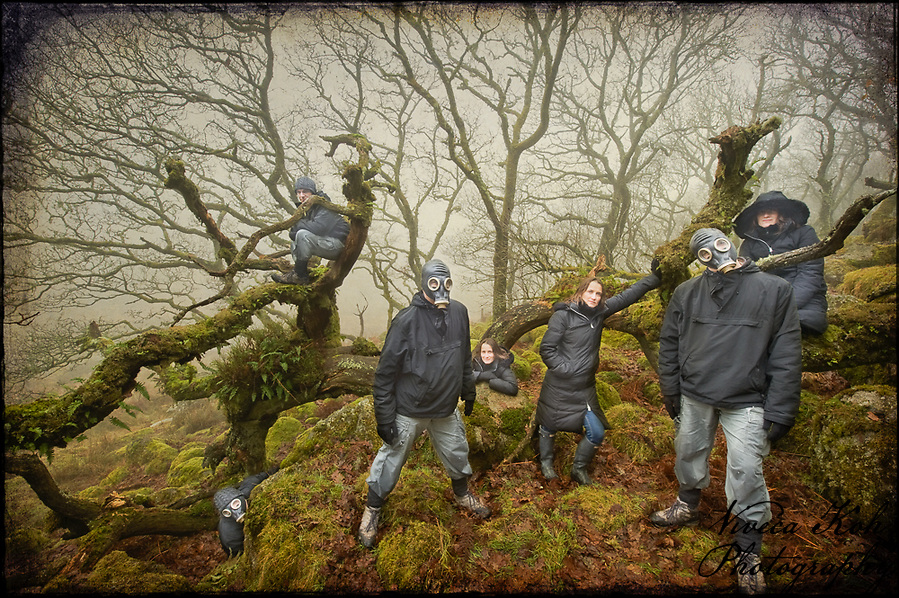 Clones in Wistman's Wood, Dartmoor (Viveca Koh)