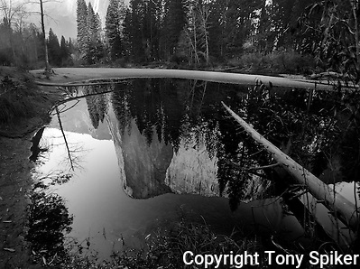 &quot;El Capitan Reflections 2&quot; - A black and white photograph of El Capitan reflecting in a pool along the Merced River (Tony Spiker)