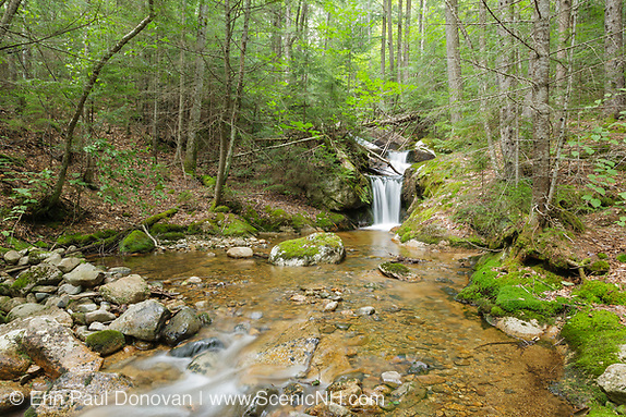 Birch Island Brook in Lincoln, New Hampshire USA during the summer months.