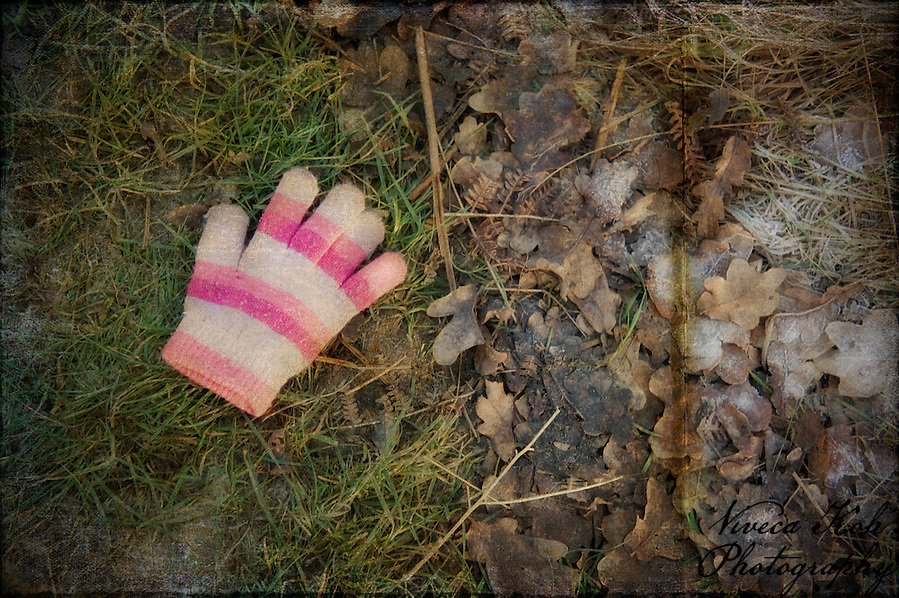 Lost woollen glove in Richmond Park (Viveca Koh)