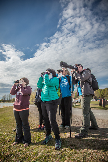 "Out of state delegats to ""The Effects of Oil on Wildife Conference"" spend their personal time watching water fowl at Westchester Lagoon in Anchorage. (© Clark James Mishler)"