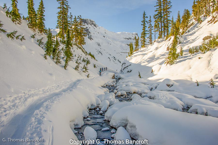 Fresh snow sparkled across the mountain while the creek gurgled and bubbled as it flowed along the snow banks. (G. Thomas Bancroft)