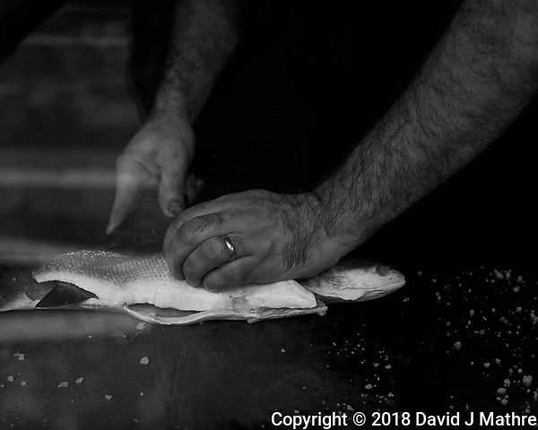 Cook Cleaning a Fish. Street Photography in Cascias. Image taken with a Fuji X-T3 camera and 35 mm f/1.4 lens. (DAVID J MATHRE)