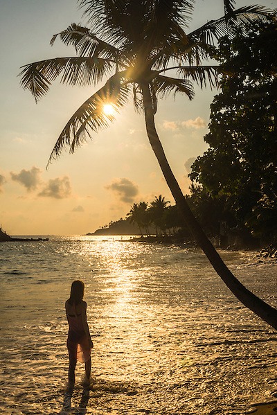 Mirissa Beach at sunset, a woman underneath a palm tree at sunset, South Coast of Sri Lanka, Southern Province, Asia. This is a photo of a woman walking underneath a palm tree at sunset on Mirissa Beach, South Coast of Sri Lanka, Southern Province, Asia.