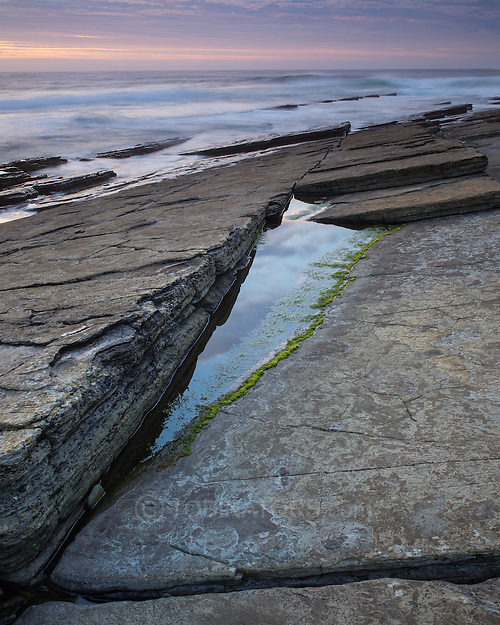 Green algae lines a small pool on the slabs at Marwick, Orkney, Scotland. (Andrew Tobin)