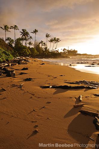 Unnamed beach and coconut trees at sunrise, Wailua, Kauai, Hawaii (Martin Beebee Photography)