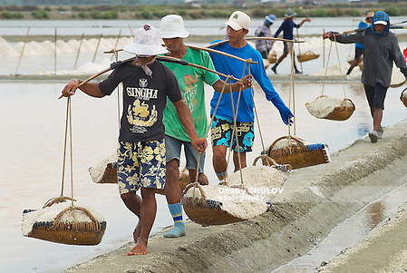 HUAHIN, THAILAND - MAY 13, 2008: Unidentified people carry salt at the salt farm in Huahin, Thailand. Salt production is one of the main industries in Huahin area, it brings modest income to many local families. (Dmitry Chulov)