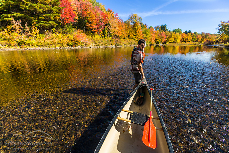 A man pulls a canoe through shallow water on the East Branch of the Penobscot River in Maine's Northern Forest. Fall. (Jerry and Marcy Monkman)