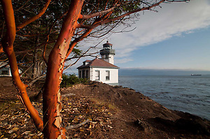 Madrona Tree (Arbutus menziesii) and Lighthouse at Lime Kiln State Park, San Juan Island, Washington, US (© Roddy Scheer www.roddyscheer.com)