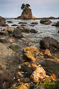 Low tide at Minokake Rocks south of Shimoda Japan. (Daryl L. Hunter/© Daryl L. Hunter)
