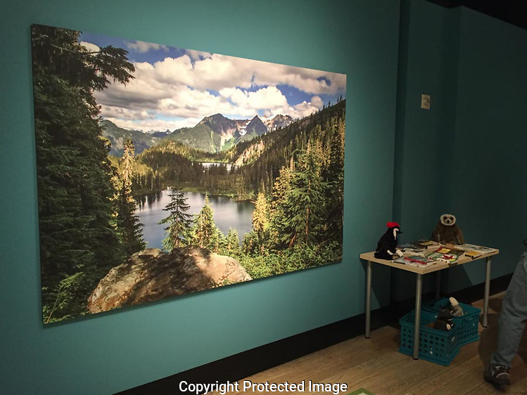 "They used my photograph of Watson Lakes at Noisy-Diobsud Wilderness in the ""Wild Nearby"" exhibit at the Burke Museum in Seattle. (Thomas Bancroft)"