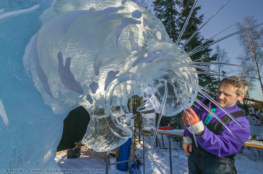 Ice sculpting photos: Ice sculptor Steve Brice adds whiskers to the face of a tiger in the 2004 World Ice Art Championships in Fairbanks, Alaska (Patrick J. Endres / AlaskaPhotoGraphics.com)