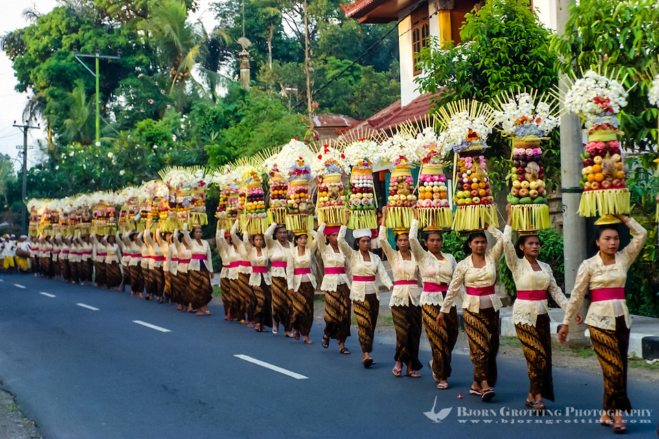 Bali, Badung, Sangeh. South of Sangeh, close to 100 women with offerings on their head  . Everyone is dressed in traditional costumes. The musicians follow behind the women. (Photo Bjorn Grotting)
