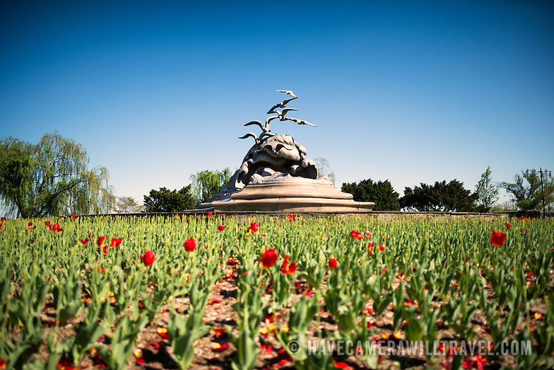 Navy Marine Memorial in Arlington VA with Tulips L121195955 Navy Merchant Marine Memorial