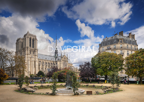 Dreamy Afternoon at the Square René Viviani, Paris, France (David Giral)