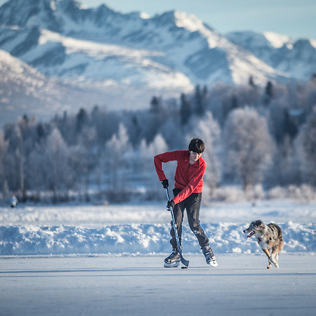 East High School (SWS) student Finn Hittson plays keep-away with Clark and Mitzi Mishler's 10 month old border collie, Molly,  at Westchester Lagoon, Anchorage (© Clark James Mishler)