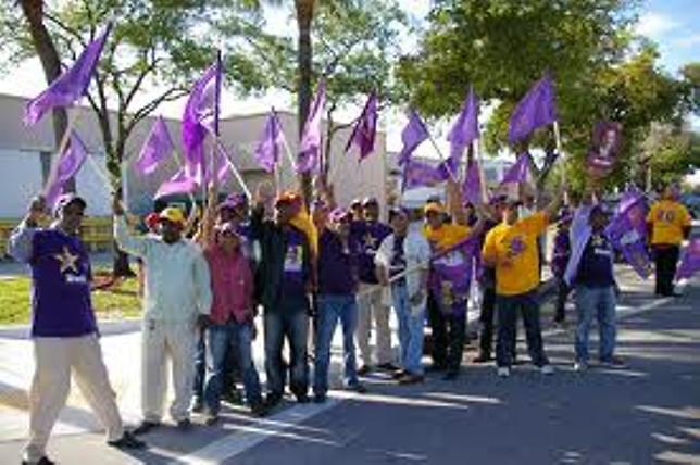 """PLD cerrará campaña en Miami con la """"caravana del triunfo con Danilo"""""""