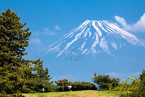 Izu Peninsula golfers enjoying a day below Mt. Fuji. (Daryl L. Hunter/© Daryl L. Hunter)