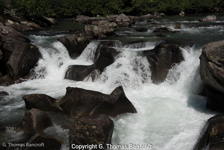 Rapids on White River at Indian Creek Trailhead. (G. Thomas Bancroft)