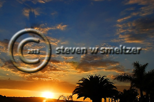 California Sunset, Palms, sky and blazing sun (Steven Smeltzer)