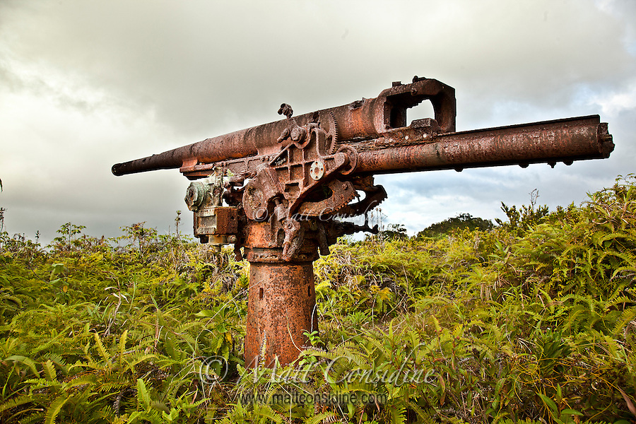 Large anti-aircraft gun from World War II, Yap Micronesia. (Photo by Matt Considine - Images of Asia Collection) (Matt Considine)