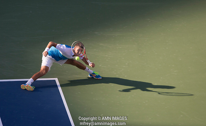 MARTIN KLIZAN (SVK) The US Open Tennis Championships 2014 - USTA Billie Jean King National Tennis Centre -  Flushing - New York - USA -   ATP - ITF -WTA  2014  - Grand Slam - USA  29th August 2014.  © AMN IMAGES (FREY/FREY-AMN IMAGES)