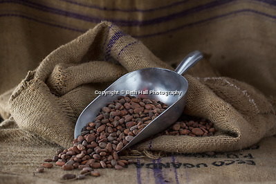 Food photo shoot of raw cacoa beans in a burlap sack. (Beth Hall)
