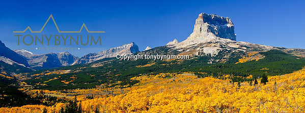 chief mountain fall colors glacier national park (Tony Bynum/tonybynum.com)