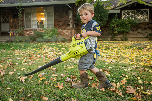 "Two year old Nathan Maloney blows leaves in front of his house on Oak Street in Calistoga.  ""Nathan loves anything that is dirty and noisey.""  -Brian Maloney (Clark James Mishler)"