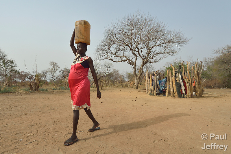 Mary Kuol carries water home from a well dug by the ACT Alliance in Yang Kuel, a village in South Sudan's Lol State where a persistent drought has destroyed crops and forced people to eat wild leaves to survive. Kuol is seven months pregnant. The well was drilled in 2016 by a local partner of Christian Aid, a member of the ACT Alliance. The organization has also distributed food vouchers to hungry families in the region. (Paul Jeffrey)