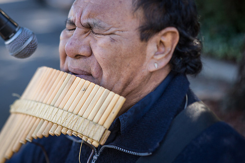 Bolivian/world musician Oscar Reynolds performs on the Samponia flute at the Calistoga Saturday Market. (Clark James Mishler)