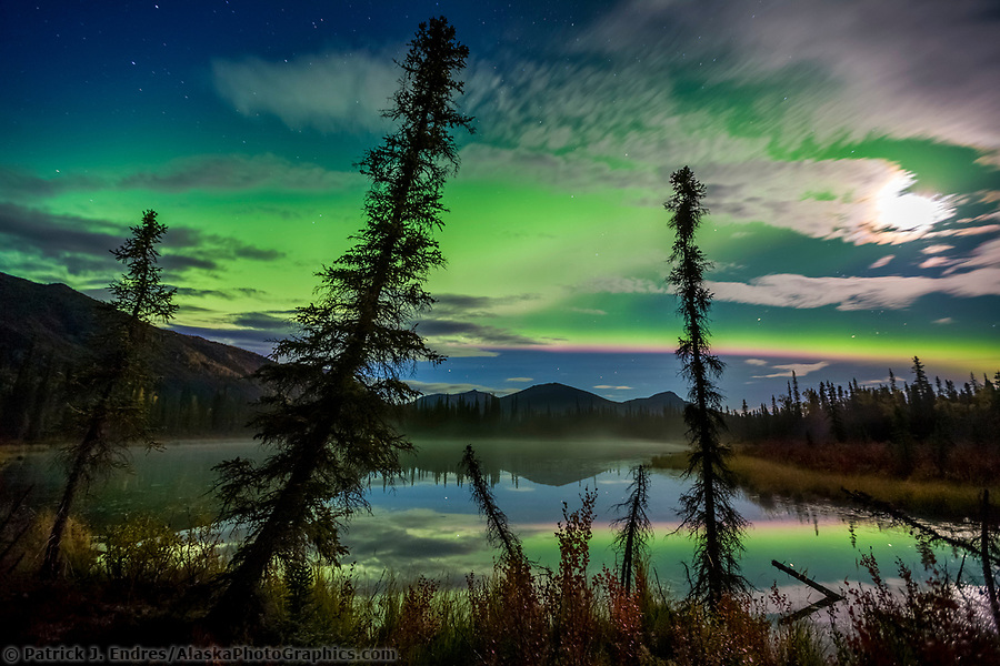 Aurora borealis (northern lights) over small taiga pond in the Brooks Range mountains, Arctic, Alaska. (Patrick J. Endres / AlaskaPhotoGraphics.com)