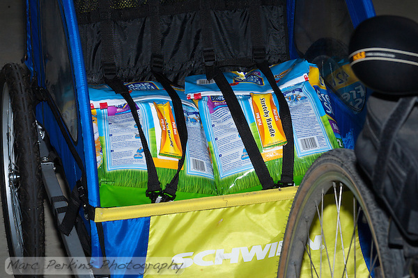 Two 42-pound bags of Fresh Step cat litter strapped in like kids into my bike trailer's child harness.  So cute! (Marc C. Perkins)