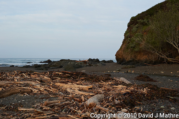 Driftwood near Pico Creek, San Simeon, Central California Coast. Image taken with a Nikon D3s and 50 mm f/1.4G lens (ISO 800, 50 mm, f/10, 1/400 sec). (David J Mathre)