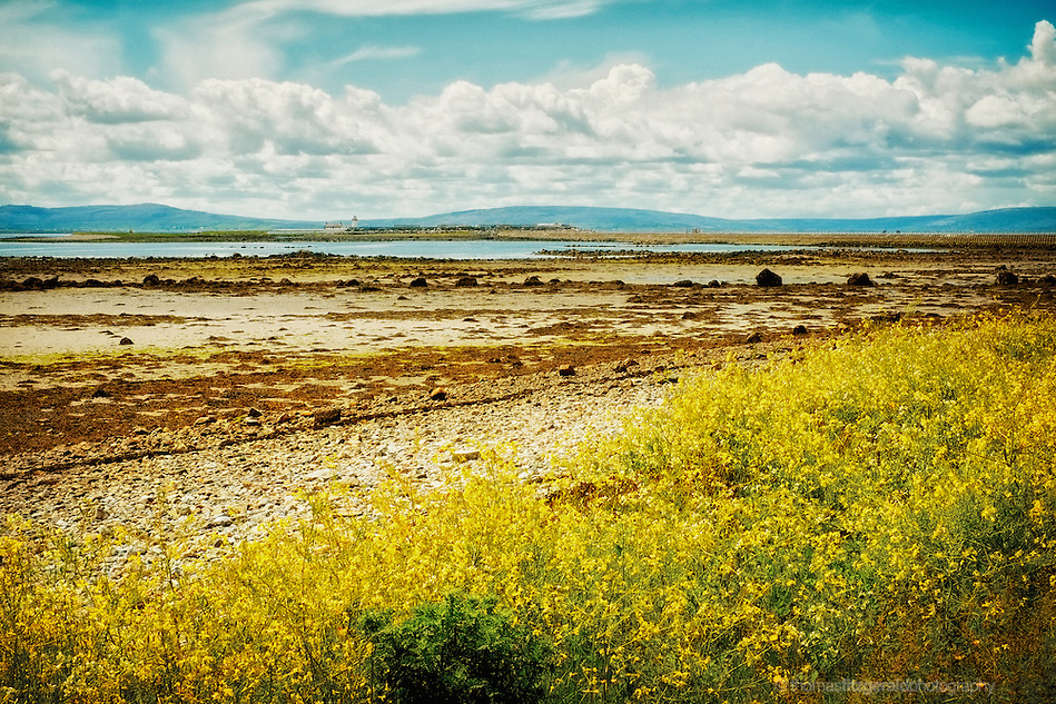 Galway, Ireland, 2012: A Low tide leaves an exposed beach covered with sea weed gently rolling out to the sea and mountains in the distance. A lone lighthouse guards the enterance to Galway Bay (Thomas Fitzgerald)