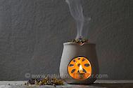 Räuchern mit Kräutern, Kräuter, Wildkräuter, Duftkräuter, Duft, Räucher-Stövchen, Räucherstövchen, Kerze, Kerzenschein, wellness, Raunächte, ätherische Öle, Geruch, Duftkerze, Stimmung, Gemütlich, Gemütlichkeit. Smoking with herbs, wild herbs, aromatic herbs, fumigate, cure, incense, Incense Warmer, portable hearth, Incense Burner, smell, candle, candlelight, wellness, essential oils, aroma, fragrance candle, mood, Comfortable, cozy atmosphere. Baumharz, Harz, tree gum, liquid pitch. Echter Lavendel, Lavandula angustifolia, Lavender. Oregano, Wilder Dost, Echter Dost, Gemeiner Dost, Origanum vulgare, Oregano, Wild Marjoram. Tüpfel-Johanniskraut, Echtes Johanniskraut, Tüpfeljohanniskraut, Hypericum perforatum, St. John´s Wort. Gewöhnlicher Beifuß, Beifuss, Artemisia vulgaris, Mugwort, common wormwood. Salbei, Salvia spec., Sage. Echtes Mädesüß, Mädesüss, Filipendula ulmaria, Meadow Sweet, Quenn of the Meadow. (Frank Hecker)