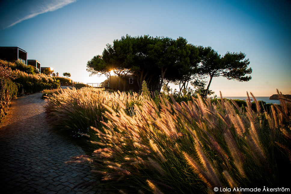Martinhal: Notes on possibly the best beach in Portugal