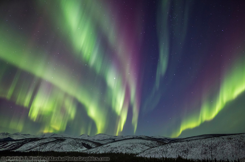 Colorful display of the northern lights over the White mountains in Alaska's interior. White Mountains National Recreation Area. (Patrick J Endres / AlaskaPhotoGraphics.com)