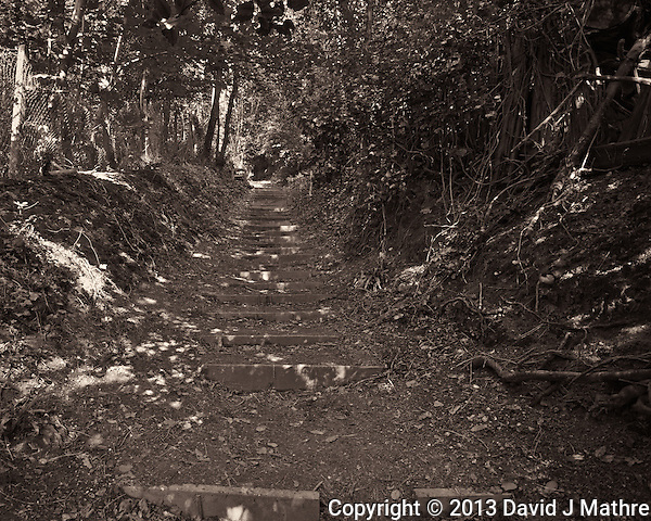 Stairway on the Foot Path, St. Margaret's Frontline Britain Trail Near Dover, England. Image taken with a Nikon 1 V2 camera and 6.7-13 mm VR lens (ISO 450, 6.7 mm, f/3.5, 1/60 sec). Image converted to B&W with Nik Silver Efex Pro II. Semester at Sea Spring 2013 Enrichment Voyage. (David J Mathre)