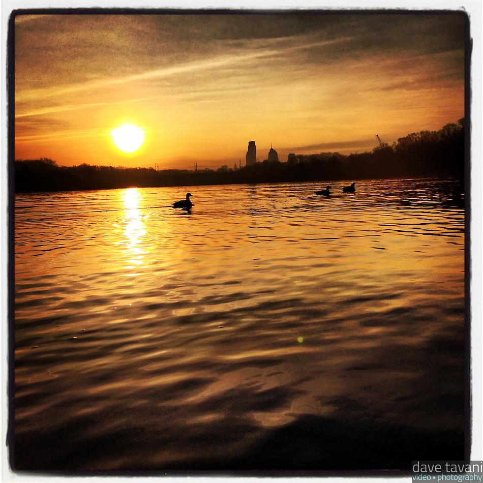 The sun rises over the Schuylkill River and the Philadelphia skyline while geese swim in the river on January 9, 2013. (Dave Tavani)