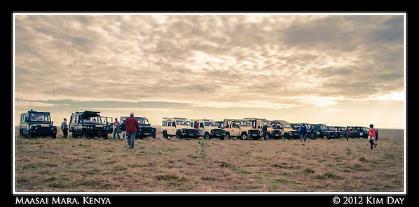 Line of Land Rovers Waiting for Mass Of Chinese Tourists.Maasai Mara, Kenya.September 2012 (Kim Day)