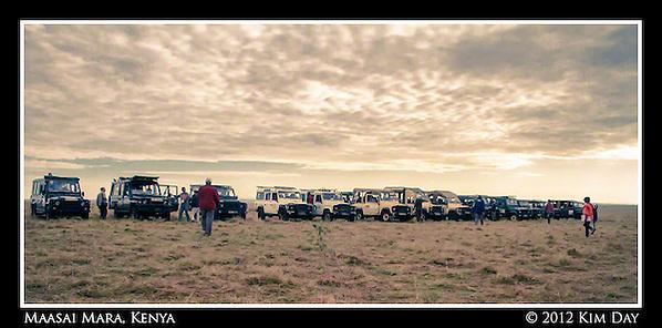 Line of Land Rovers Waiting for Mass Of Chinese Tourists.Maasai Mara, Kenya.September 2012 (Kim Day)